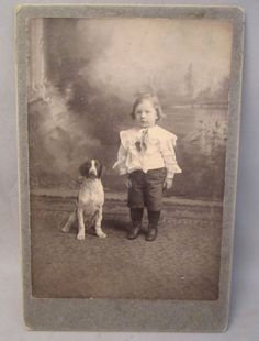 Cabinet Card Photo Brittany Spaniel Dog and Little Boy well dressed