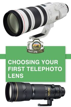 Choosing Your First Telephoto Lens In this camera gear tutorial learn how to make the best choice when buying your first telephoto lens for wildlife photography. Wildlife Photography Tips, Gopro Photography, Photography Basics, Photography Lessons, Photography Equipment, Video Photography, Photography Tutorials, Wedding Photography, Portrait Photography