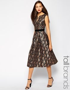 Little Mistress Tall Midi Lace Skater Dress-something a little different