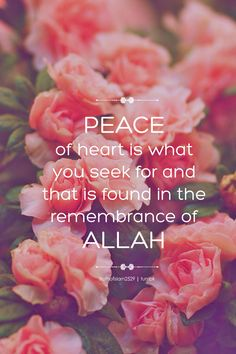 truthofislam2529: Peace of heart is what you seek for and that is found in the remembrance of Allah