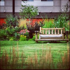 We love all our #parks in Stapleton #summer #greengrass #nature