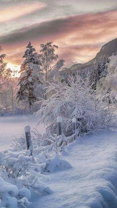 Image de winter