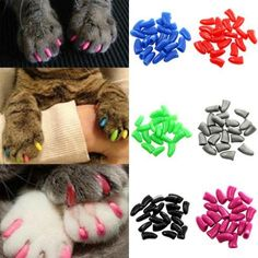 Fashion Soft Rubber Pet Dog Cat Kitten Paw Claw Control Nail Caps Cover in Pet Supplies, Cat Supplies, Grooming Cat Nail Caps, Cat Safe Plants, Soft Nails, Claw Nails, Pet Paws, Cat Supplies, Cat Grooming, Cats And Kittens, Cats Bus