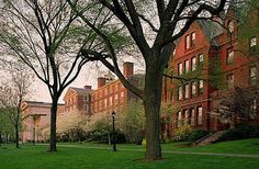 Located in Providence, Rhode Island; Brown University is one of the original eight east coast Ivy League colleges known for their high a. Brown University Campus, Arcadia Bay, Ivy League Schools, College Admission, The Secret History, 6 Photos, Life Is Strange, Learning Environments, College Life