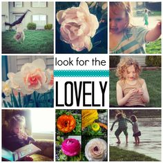 Look For the Lovely