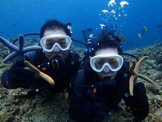 冬の沖縄はダイビングが最高でっす! - http://www.natural-blue.net/blog/info_20607.html