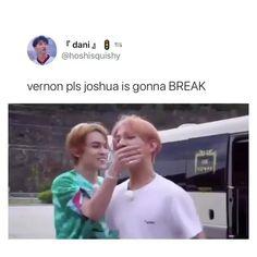Seventeen Lyrics, Seventeen Going Seventeen, Vernon Seventeen, Joshua Seventeen, Seventeen Memes, Seventeen Album, Diecisiete Memes, Kpop Memes, Funny Memes