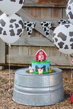 Farm animal themed cake smash photographer carrollton texas