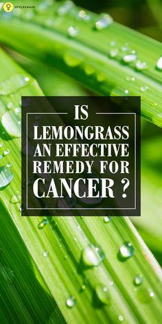Is Lemongrass An Effective Remedy For Cancer?