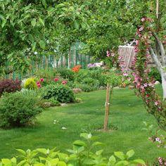 Våren er den beste tiden for å få en fin sommerplen - Min Oase Diy Wreath, Wreaths, Stepping Stones, Outdoor Gardens, Outdoor Structures, Outdoor Decor, Plants, Tips, Blog
