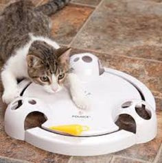 Frolicat Pounce Rotating Cat Teaser    FREE AND FAST PRORITY SHIPPING!!! #FroliCat