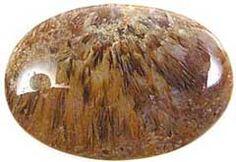 Cab1541C Sagenite Agate Image