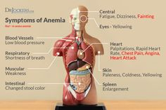 It is possible to have a hiatal hernia without knowing, Learn the common symptoms and natural support strategies for this health-draining condition. Hernia Symptoms, Reflux Symptoms, Asthma Symptoms, Stomach Muscles, Stomach Acid, Hiatus Hernia, Gastroesophageal Reflux Disease, Iron Deficiency
