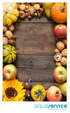 Calabazas, uva, granadas... ¿Qué producto otoñal es tu preferido? Haz clic y descúbrelos en el blog de Aquaservice: http://www.aquaservice.com/informacion/que-alimentos-de-otono-te-gustan-mas/