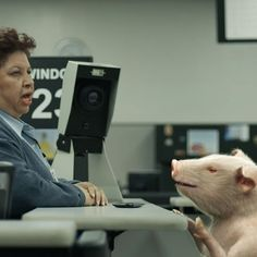 GEICO Pig At The DMV Commercial  Best Commercial Ever!!