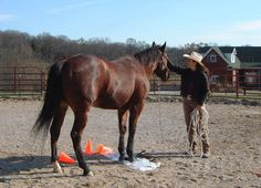 Nervousness can account for behavior and training problems, but you can help your horse work through it.