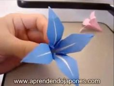 Origami Flower - Flor de Origami - I want to learn to do something like this