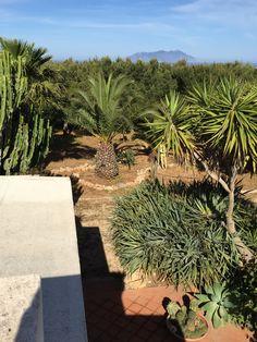 XLS terrazze e giardini