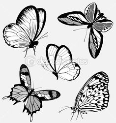 Set  black white butterflies of a tattoo by MariStep - Stock Vector