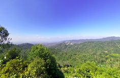 Puncak Gunung Lanang, Kabupaten Kulon Progo merupakan salah satu destinasi wisata alam yang menawarkan keindahan bukit Menoreh. Mountains, Nature, Travel, Naturaleza, Viajes, Trips, Nature Illustration, Outdoors, Traveling