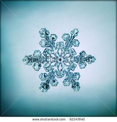 stock photo : natural snowflake macro
