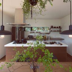 tongariさんの、キッチン,観葉植物,グリーン,モノトーン,マスターウォール,アイランドキッチン,マットブラック,NO GREEN NO LIFE,LIXIL,グリーンのある暮らし,のお部屋写真