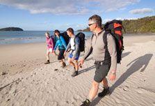 Walkers on Maori Beach on the Rakiura Track. Great Walks, Parks And Recreation, New Zealand, Beach Mat, Feels, Track, Walking, Backyard, Island