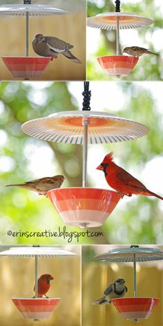 DIY bird feeder made using a plastic plate and bowl and a carriage bolt. Looks really cute and fairly simple, maybe I'll give this a try soon.