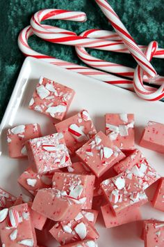 Easy Candy Cane Fudge I definitely need to try these. Christmas Sweets, Christmas Candy, Christmas Crack, Xmas, Christmas Parties, Christmas Goodies, Christmas Time, Fudge Recipes, Candy Recipes