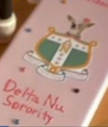the director of legally blonde said he based Delta Nu off of Delta Gamma.
