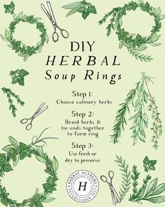 How To Make DIY Herbal Soup Rings – Herbal Academy - Healty fitness home cleaning Healing Herbs, Medicinal Herbs, Herbal Remedies, Natural Remedies, Kitchen Witchery, How To Make Diy, Warm Outfits, Herbal Medicine, Good To Know