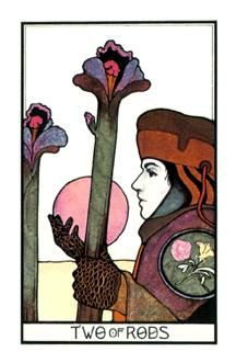 December 1 Tarot Card: Two of Wands (Aquarian deck) You've already set the wheels in motion ~ force isn't needed now. Step back and see how things fall into place...