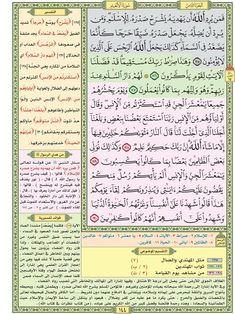 سورة الأنعام / صفحة ١٤٤ / مصحف التقسيم الموضوعي للحافظ المتقن