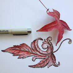 leaf + filagree                                                      ∞Noel Badges Pugh∞