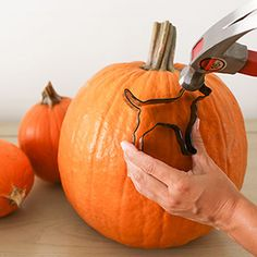 Read on for 5 pumpkin carving hacks that are sure to make your Halloween extra spooky… Halloween Decorations, Halloween Pumpkins, Holidays Halloween, Halloween Crafts, Happy Halloween, Halloween Havoc, Halloween 2016, Halloween Stuff, Spooky Decor