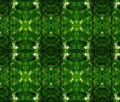 Fern Gully fabric by persimondreams on Spoonflower - custom fabric