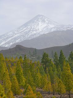 Mount Teide north west side Tenerife | Flickr - Photo Sharing!