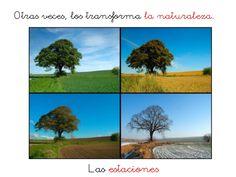 El paisaje. Primer Ciclo Primaria