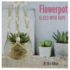 EUR 1,95 - glazen bloempot touw+kralen 10x60cm - 100 Nieuwste - Action Nederland B.V. Plant Hanger, Flower Pots, Action, Glass, Shopping, Home Decor, Natural Colors, Flowers, Deco