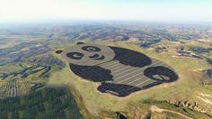 Panda Power Plant: Shaped Solar Panel Array Forms China's National Animal | Urbanist