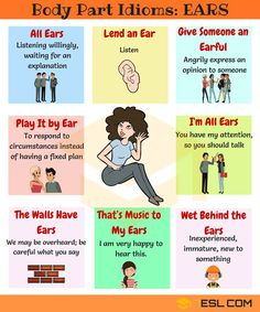 BODY Idioms and Expressions! List of useful body parts idioms in English with meaning and example sentences. Learn these body idioms in English to increase your English Idioms, English Phrases, Learn English Words, English Writing, English Lessons, English Grammar, English Study, Good Vocabulary, English Vocabulary Words