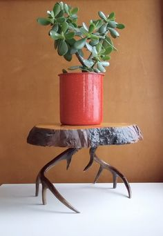 Vintage Antlers and Burl Wood Side Table or Footstool : Log Furniture