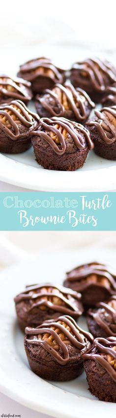 These chocolate turtle brownie bites are a simple yet rich dessert that can be made with homemade brownie batter or boxed brownie batter! The brownies are stuffed with chocolate covered caramels (like Rolos), topped with a pecan, and drizzled with melted chocolate! Plus, a step-by-step video below.