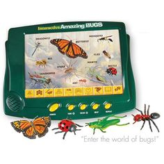 Interactive Bug Boards & Insect Replicas for kids at CPtoys.com