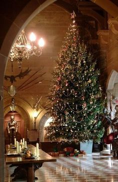 Beautiful Christmas tree and setting. Maybe tone down the 'Tudor Castle' feel a bit.