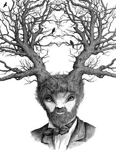 Caught in the Headlights By Dan Hillier