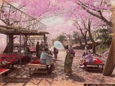 Catawiki online auction house: Unknown (19th c) - Salon de thé extérieur avec geishas à Noge Hill, Yokohama, Japan