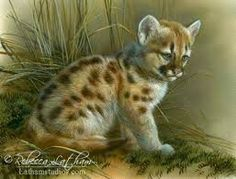 Image result for rebecca latham wildlife art