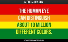 The human eye can distinguish about 10 million different colors.