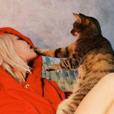 #LinaFrida cat Lucia Del Pasqua